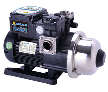 1/4 HP Electronic Pump